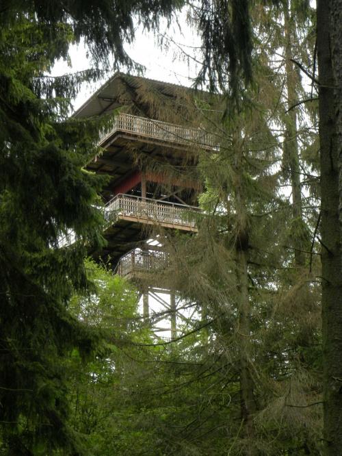 wieża widokowa w Wieżycy #Kaszuby #Wieżyca