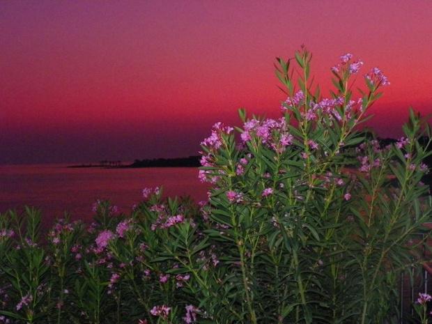 2 zdjęcia wykonane w tureckim Incekum a jedno przy wejsciu do portu w Alanyi w lipcu 2011.Bardzo piekny kraj,cudne widoki,mili ludzie i piekielny upał,polecam gorąco ten kraj jako cwl wakacyjnych wyjazdów...