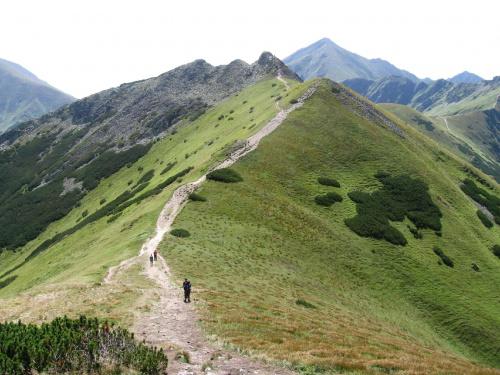 Ornaczańska Przełęcz i Siwe Skały #Góry #Tatry #StarorobociańskiWierch