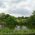 spacer po londyńskim parku #PEJZAŻE
