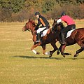 i prawie go mam #konie #wyścigi #huberys