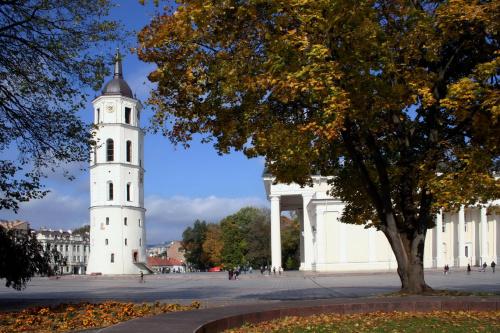 Plac Katedralny #Wilno