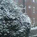 #śnieg #zima