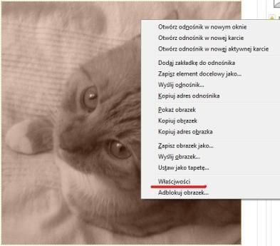 http://images45.fotosik.pl/22/7289fe03922a149f.jpg