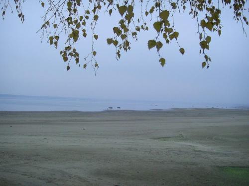 Po spotkaniu pozostały w pamięci niezapomniane wrażenia oraz zaprezentowany widok jez. Turawskiego. #Przyroda #Jeziora