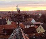 http://images45.fotosik.pl/234/4df6658e9509072am.jpg