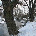 Bóbr #Rzeki #krajobrazy #przyroda