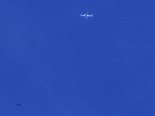 ptaszysko Air Italy #b757 #rnav #AirItaly #ptaszysko