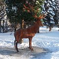 Prosto z Jeleniej Góry do parku w sąsiednim Karpaczu :) #karpacz #zima #park
