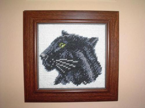 Kolekcja -dzikie koty 1. #hafty