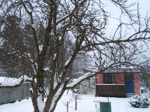 Działki zimową porą