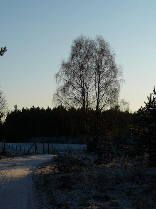 Styczeń 2009 #Zima #styczeń