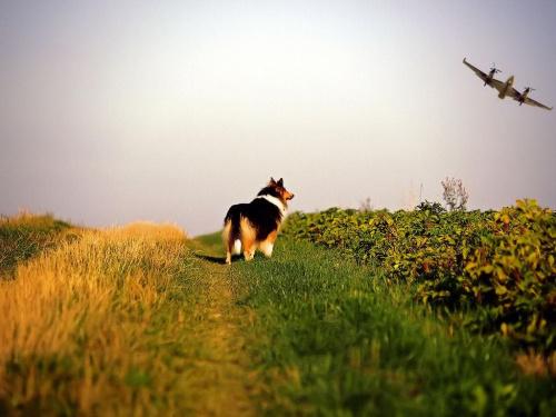 Selly podziwia #Natura