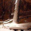 Ławeczka w Parku Tietza w Międzychodzie w śniegu :) aż ma się chęć usiąść ;) #śnieg #ławka #park